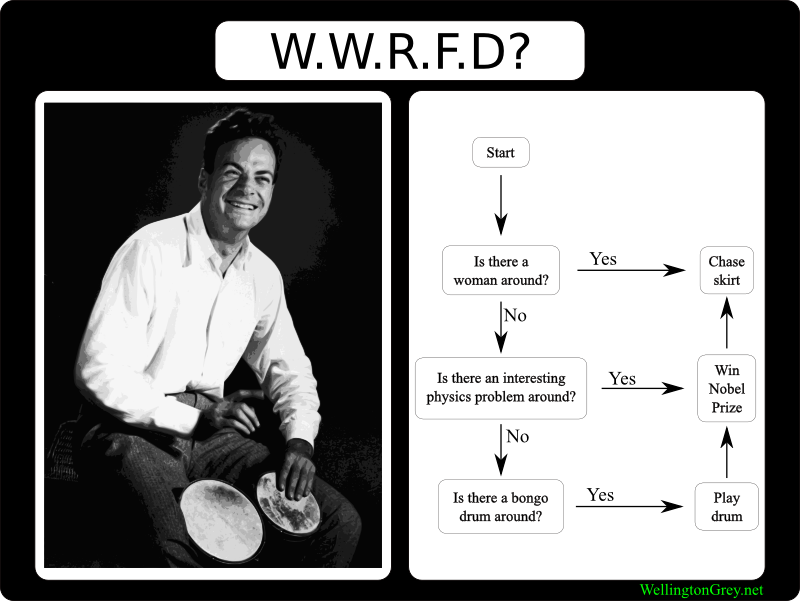 What Would Richard Feynman Do?