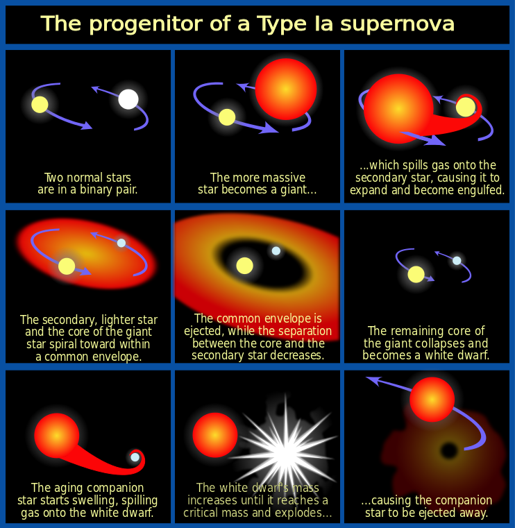 Type 1a: The Other Type of Supernova